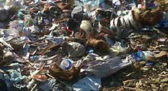 Sampah berserakan di kampung Komodo, Taman Nasinal Komodo (Foto:Sefry Jemandu)