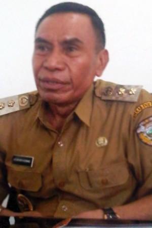 Wakil Bupati Ende, Djafar Ahmad