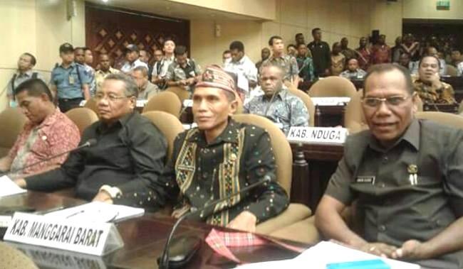 Asisten I Bupati Manggarai Barat, Benediktus Banu hadir memwakili Managgarai Barat dalam deklarasi  225 usulan DOB di DPD, Selasa 4 Oktober 2016 (Foto: Facebook  Bernadus Barat Daya)